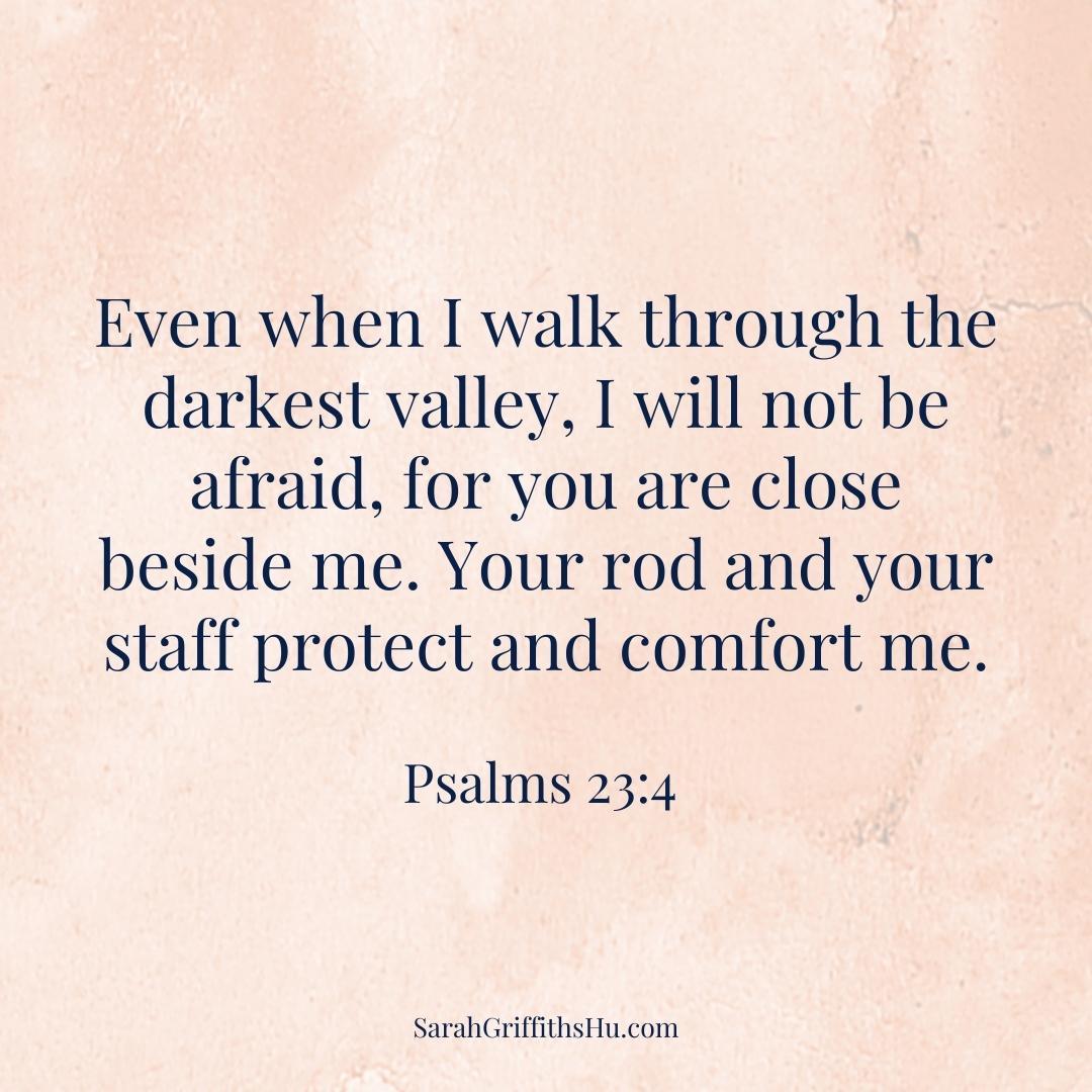 Psalms 23 4 NLT