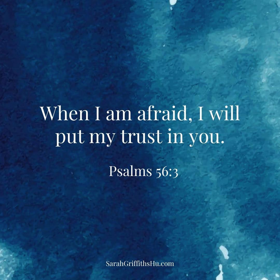 Psalms 56 3 NLT